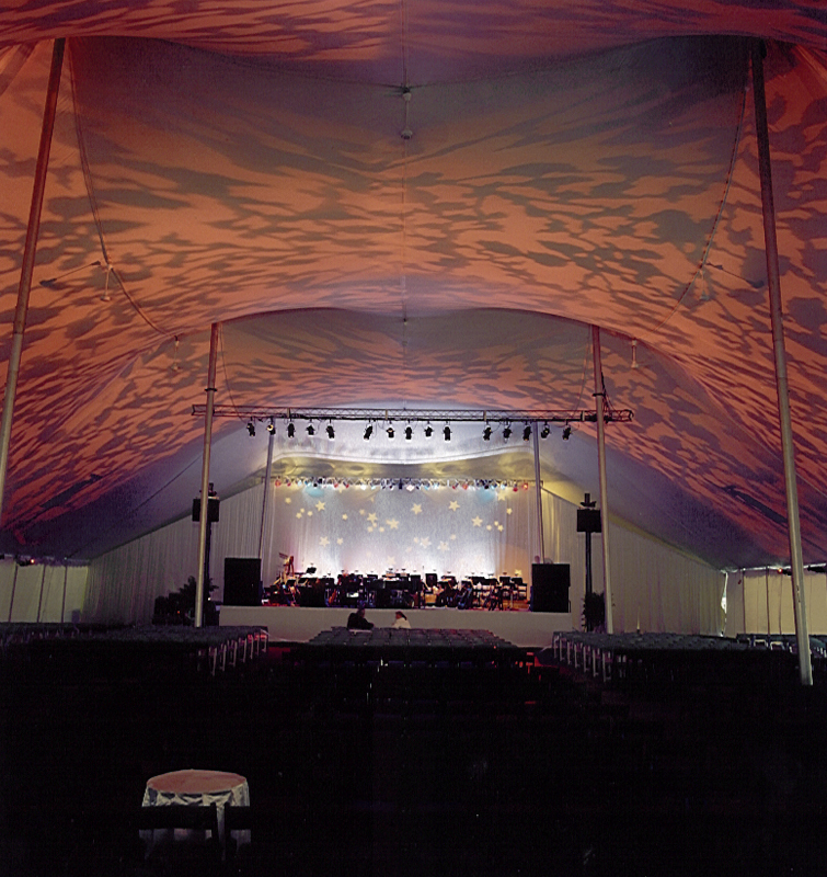 Outdoor theme party Textured leaf projections on tent ceiling